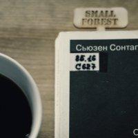 small forest ))) :: ksanka skornyakova