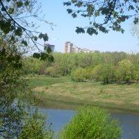 Весной на озере :: Елена Семигина