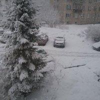 Конец марта :: Любовь Чунарёва