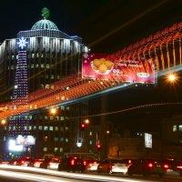 Ночной вид Новосибиска. :: Анатолий Стафичук