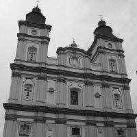 Кафедральный   собор   Ивано - Франковска :: Андрей  Васильевич Коляскин