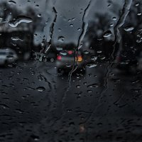 Утренний дождь :: Виталий Павлов