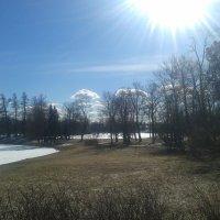 Екатерининский парк весной :: Сапсан