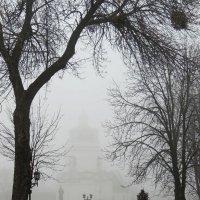 В тумане :: Роман Савоцкий