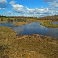 Весенний разлив :: Leonid Rutov
