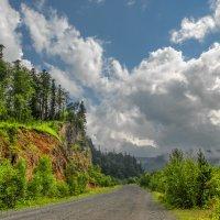 Дорога на плато Лаго-Наки :: Аnatoly Gaponenko