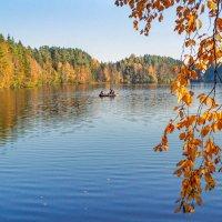 На лесном озере :: Виталий