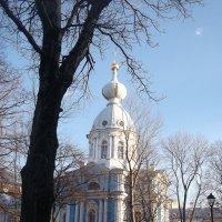 Вид на Смольный монастырь :: Svetlana Lyaxovich