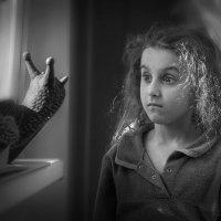 В мире сказок и чудес :: Лидия Цапко