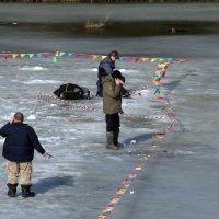 Алло, рыба, ты где? я такие бабки заплатил!!! :: Валерий Самородов
