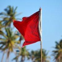 Красный - он и в Африке красный... :: Татьяна Евдокимова