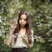 Цветущая весна!... :: Ольга Егорова