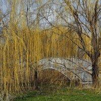 Весенний пейзаж :: Константин Бобинский