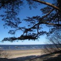 Холодное солнце, холодный песок... :: veera (veerra)