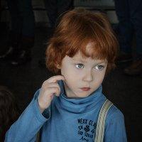 мальчик :: Елена Логачева