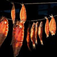 Рыбка  к  пиву :: Natali D