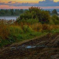 Осенние сумерки... туман... :: Александр Никитинский
