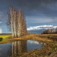 Весна. :: Александр Тулупов