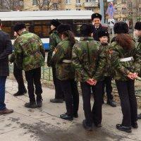 Молодо-зелено :: Андрей Лукьянов
