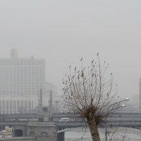 Март в Москве :: Марина Лучанская