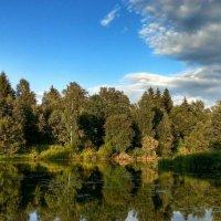 Озеро под Можайском :: Мария Минченко