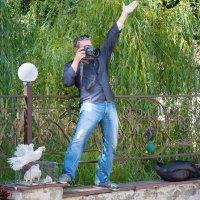 Внимание! Сейчас вылетит птичка! :: Светлана Тремасова