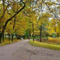 Прогулка в осень... :: Sergey Gordoff