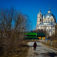 в гусе железном :: Валерий Гудков