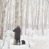 В лесу :: Ilona An