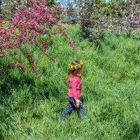 Гуляние в цветущем саду :: Юрий Яловенко