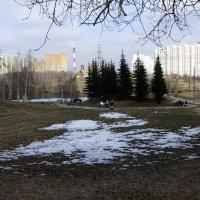 Весна :: Людмила Монахова