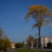 в городе осень :: Александр Попков