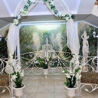 Свадебная арка :: Галина Сафиулина