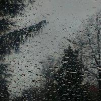Капли дождя на стекле :: Дарья Fox