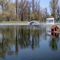 На озере :: Владимир Николаевич