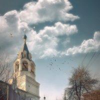 ВЕСНА :: Sergey Komarov