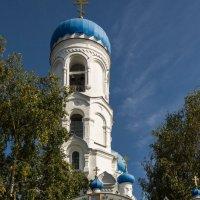 Успенский собор в Бийске :: Sergey Miroshnichenko