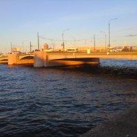 Мост на Неве :: Svetlana Lyaxovich