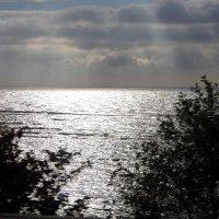 Финский залив :: Марина