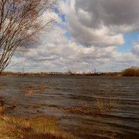 Сож в марте :: Александр Прокудин