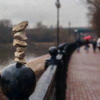 Прогулка в дождливый день :: Александр Орлов