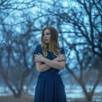 Холодный апрель :: Женя Рыжов