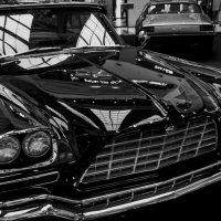 Chrysler 1974 :: Tanja Gerster