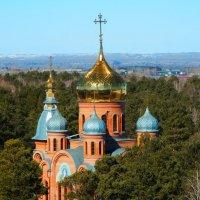 Со светлым православным праздником - Вербное воскресенье :: Владимир Звягин