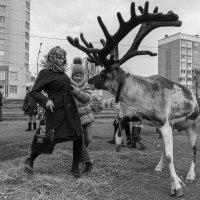 Ситуация. :: Евгений Голубев