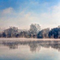 Туман на реке :: Максим Миронов