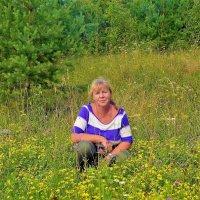 Луговые цветы... :: Sergey Gordoff