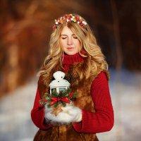 Зимние сны :: Светлана Никотина
