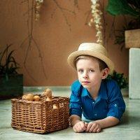 Мальчик с утятами :: Ольга Никонорова