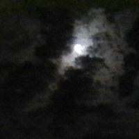 Буря мглою небо кроет :: Александр Либертайм